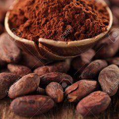 Chocolats / Cacao
